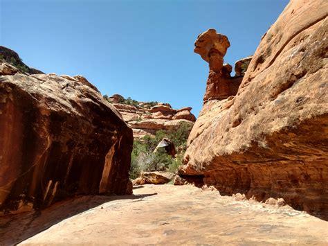cedar mesa loop ruins  monuments bikepackingcom