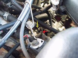 Speed Sensor Location  Can You Help Me Find Where Is The