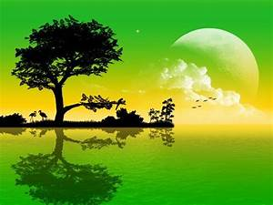 3D Nature Wallpaper For Mobile Phone