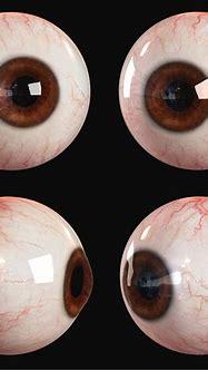 3d Human Eye   Andor Kollar - Character Artist
