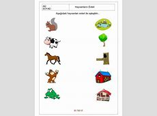 Worksheet About Animals And Their Food worksheet example