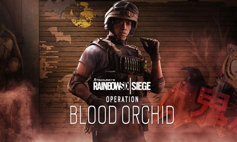 apprendre a cuisiner algerien rainbow six siege s blood 28 images rainbow six