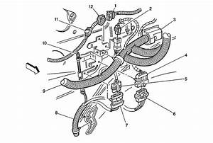 Chevy Avalanche Wiring Harness