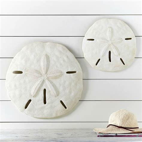 I saw this framed sea urchin wall art at pottery barn and knew i wanted to make something similar for summer. Large Starfish & Sand Dollar for Wall Decor - Coastal Decor Ideas and Interior Design ...
