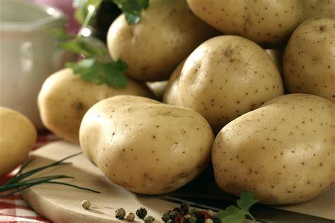 cuisine pomme de terre des pommes de terre pour tous les goûts et tous les plats