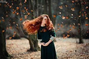 leaves blowing in the wind | Beauty of The Wind ...