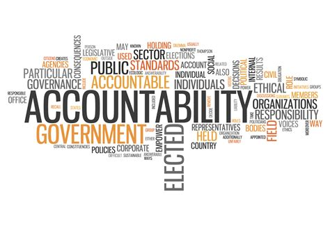 levels  accountability executive coach team