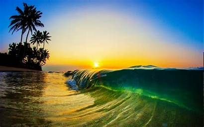 Sunrise Waves Palm Trees Morning Sand Sea