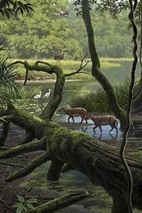 Raúl Martín - Eocene Rainforest in Messel, Germany ...