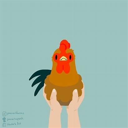 Chicken Scratch Funny Animation Gifs Mit Edu