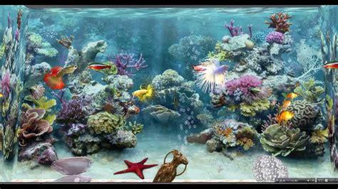 rubis topaz sl aquarium virtuel et poissons anim 233 s sl fish tank and swimming fishes