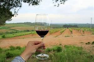 3 Spanish Road Trips for Wine Lovers - An Insider's Spain Travel Blog & Spain Food Blog!