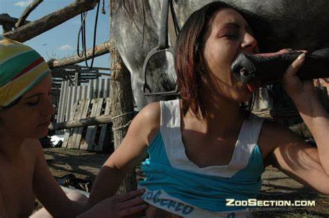 Womans Tasting The Flavor Of Animals Sperm horse porn