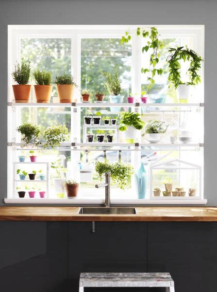 Window Garden Plants by Where There S A Window There S A Way To Garden Work With