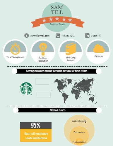 17 best images about infographic visual resumes on