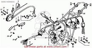 Honda Xl125 K1 1975 Usa Wire Harness