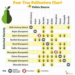 Pollination Charts For Fruit