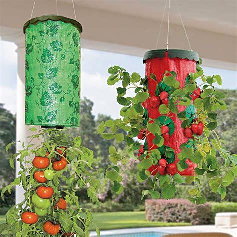 tomato planter vertical garden wall planter grow bag planter wall planter bag growing bags for plants for