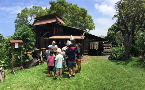 Kona coffee history farm is a place where you can learn about the history of coffee planting in hawaii. Hawaii: Unique Things to Do on the Big Island