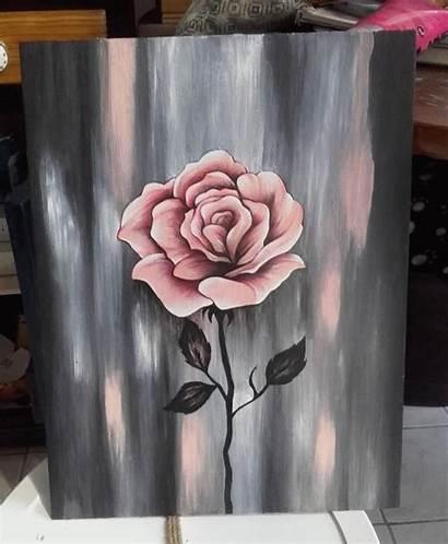Acrylic Painting Beginners Cactus Blending Cat Canvas