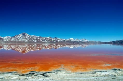 Bloody Red Laguna Colorada in Bolivia | Places To See In ...