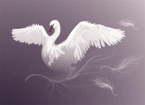 swan  vector    vector  commercial
