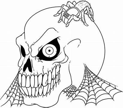 Coloring Scary Skull Tarantula Pages Printable Colouring