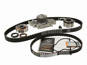 Timing Belt Kit And Water Pump For 1998