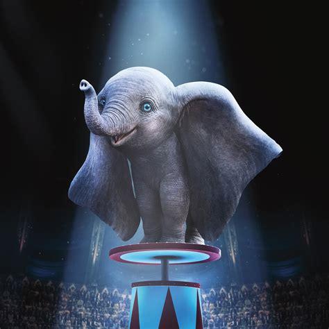 wallpaper dumbo elephant animation    movies