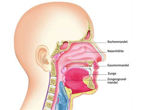 mandelentzuendung symptome diagnose behandlung