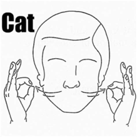 20172018  Cat 4