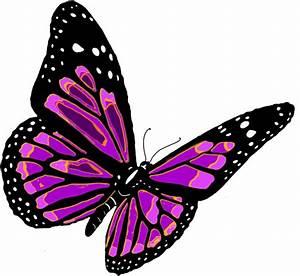 Flying Butterflies Png - ClipArt Best
