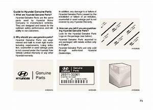 2010 Hyundai Santa Fe Owners Manual