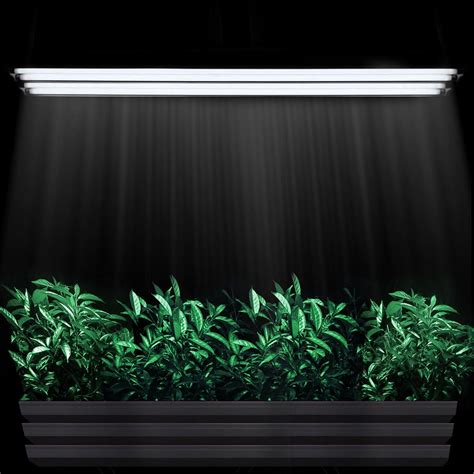 grow lights t5 4 ft t5 grow light fluorescent hydroponics 6500k