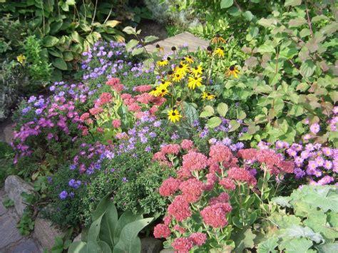 Garten Pflanzen Im Herbst by Stauden Im Herbst Stauden Im Herbst Pflanzen Samen Maier