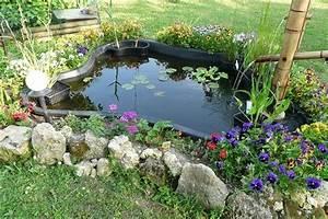 Plante Pour Bassin Extérieur : plante aquatique pour bassin exterieur ~ Premium-room.com Idées de Décoration