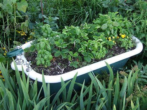 tubs in gardens start a small vegetable garden