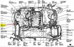 Wire Diagram 2001 Mustang Gt