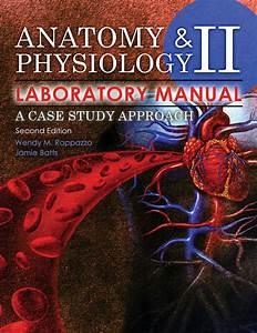 Anatomy And Physiology Ii Laboratory Manual  A Case Study