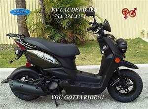 2015 Yamaha Zuma 50f For Sale In Miami  Florida Classified