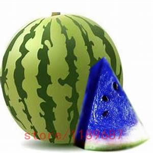 Online Buy Wholesale blue watermelon from China blue ...