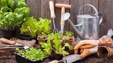 gardening material gardening tips 3 things to know when planting today com