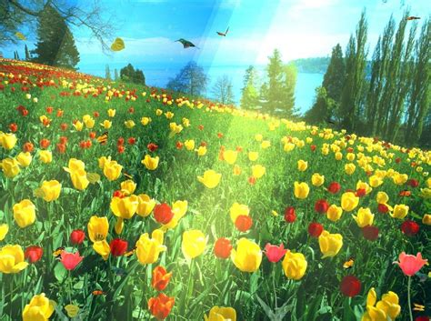 Free Animated Wallpaper For - animated wallpapers for pc 73
