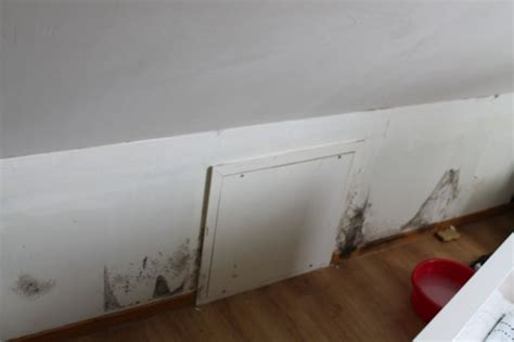 humidité plafond chambre humidité dans chambres sous comble 12 messages