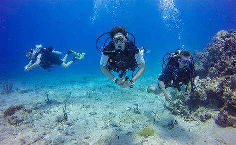 catalina island diving snorkeling   dominican republic