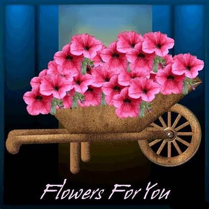 Flowers Mandeep Dhillon Desicomments Ni8