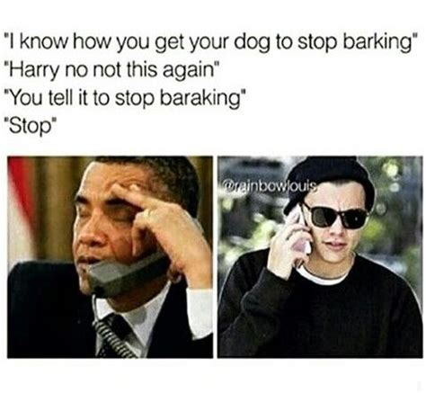 Harry Styles Memes - pinterest givememynameplx harry pinterest 5sos zayn and harry edward styles