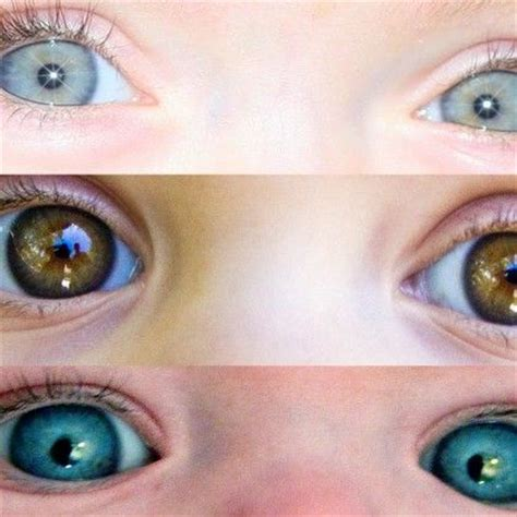 baby eye color predictor predicting my babies eye color all about dads newborn