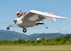 Flight of fancy as tycoon builds working model of ...