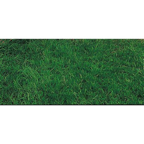8 lbs canada green grass seed 175749 yard garden at